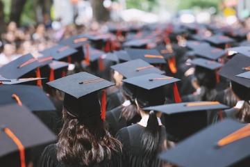 Law Graduate Hats 360 x 240